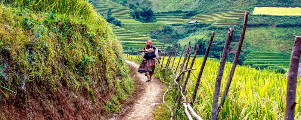 Voyage culturel au Vietnam : les immanquables