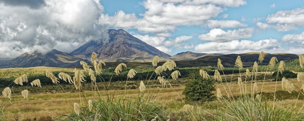 Voyage en Nouvelle-Zélande : les plus belles randonnées à planifier